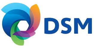DSM Engineering