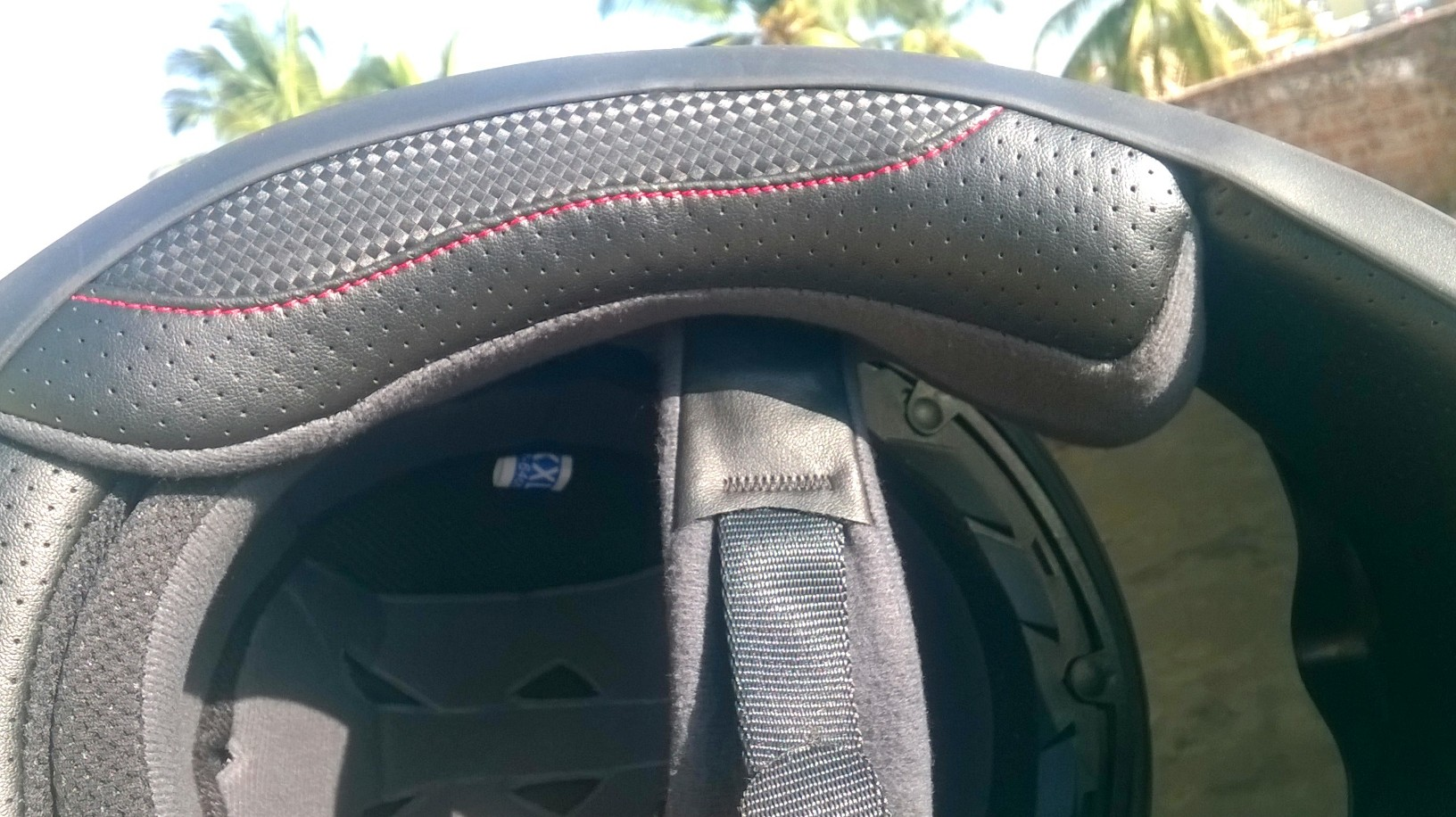 AXR Wolf Helmet (8)