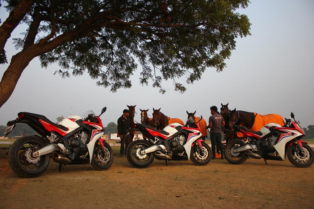Horses meet Horsepower at Big Bike Ride